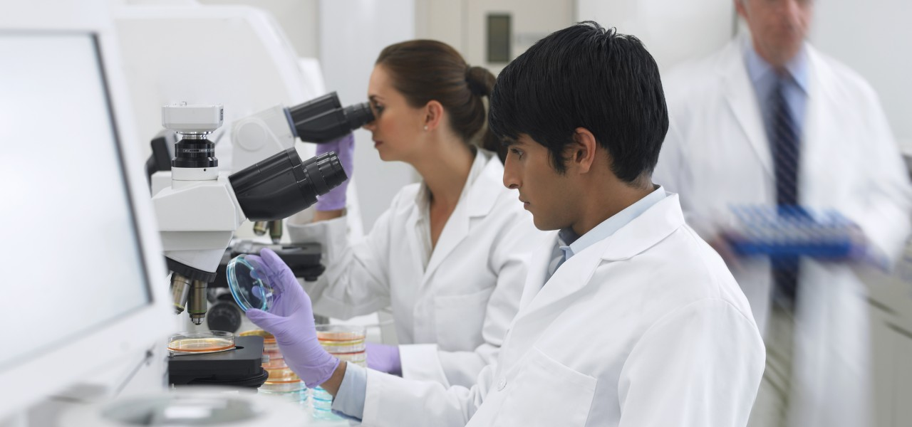 Researchers in a lab-image